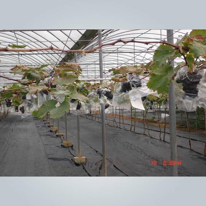 抗UVリサイクルpp不織布雑草管理布