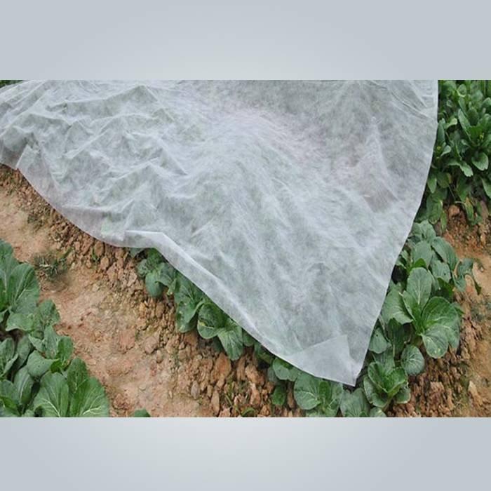 100% PP nicht gewebtes landwirtschaftliches Schutzgewebe für den Winter