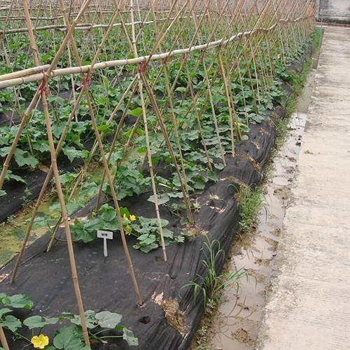 TNT Ткань для борьбы с сорняками