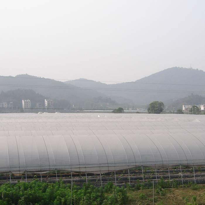 UV Couvertures non tissées de plantation traitées