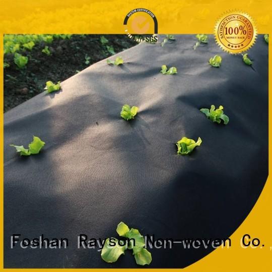 Rayson vlies, ruixin,enviro wachstum uv beständig landschaft stoff personalisierte für outdoor