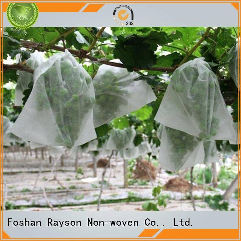 Rayson 不織布、 ruixin 、エンバイロバナナ透過性のためのよい価格で雑草防除ファブリック屋外