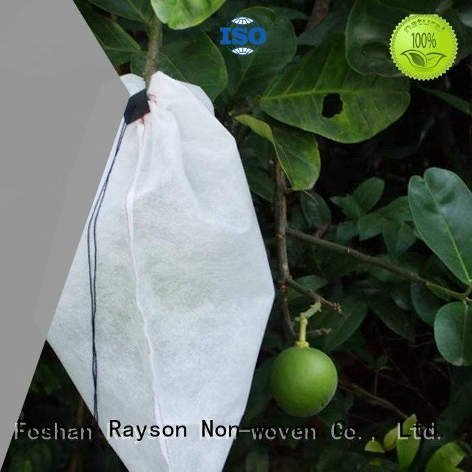 Quality rayson nonwoven,ruixin,enviro Brand fabric for weeds white 60gr